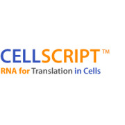 Cellscript