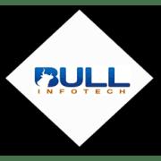 Bull Infotech