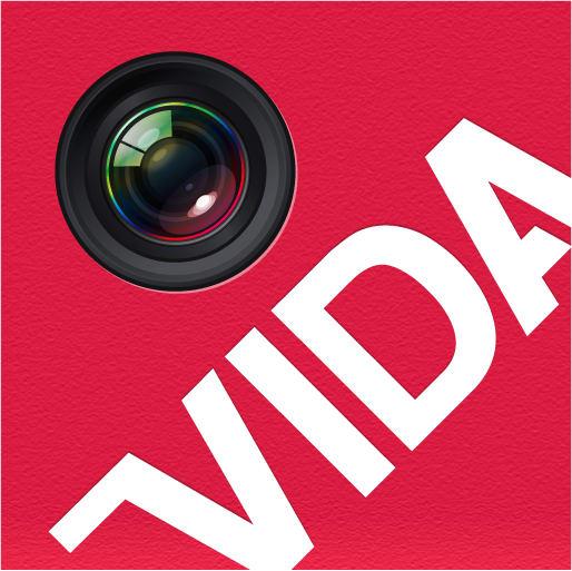 Logo for VIDA