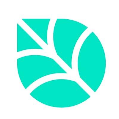 Logo for Birch